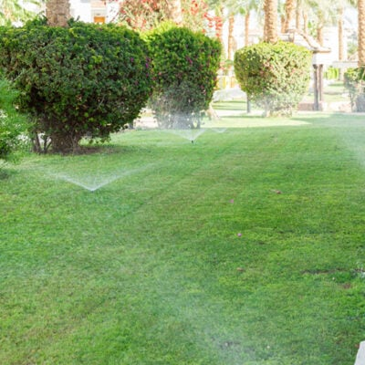 How To Get Your Yard in Shape With These Tips FEATURED