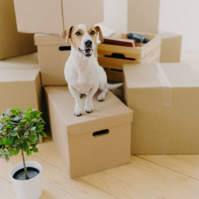 Moving Into A New House Important Things You Need To Check FEATURED