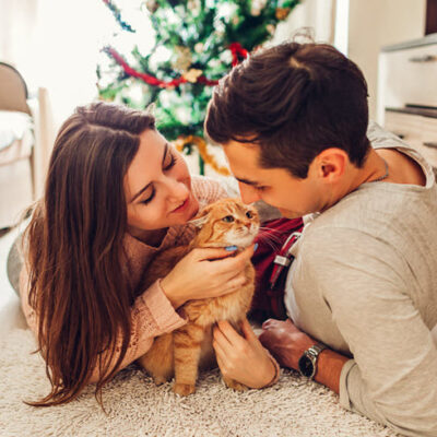 couple-love-lying-by-christmas-tree-playing-with-cat-home-man-woman-relaxing-featured