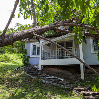 falling-tree-after-hard-storm-damage-house-featured